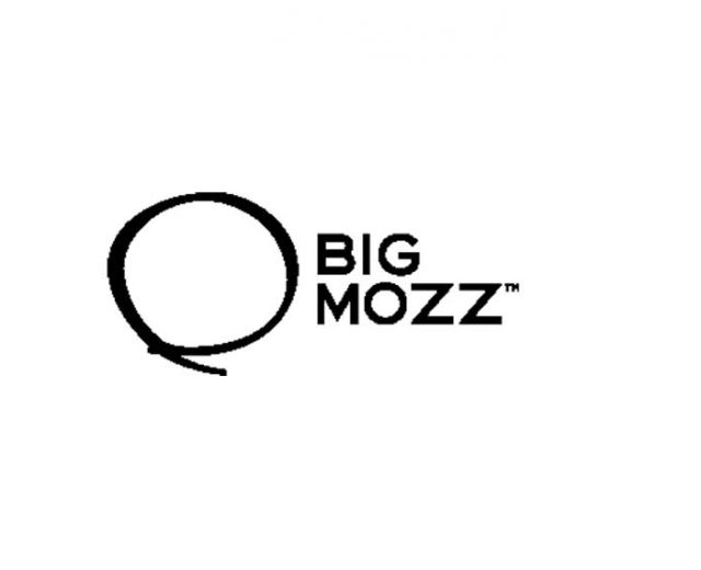 bigmozz